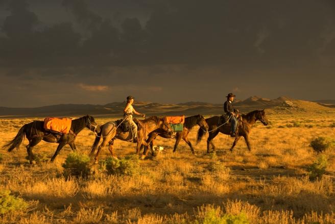 im Great Divide Basin, Wyoming